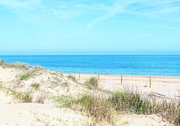 Dunas de playa